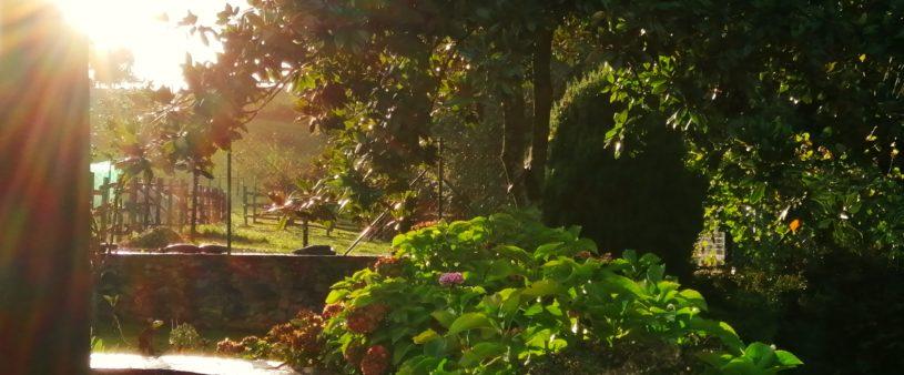 El sol dice adiós en el jardín de La Llevanza
